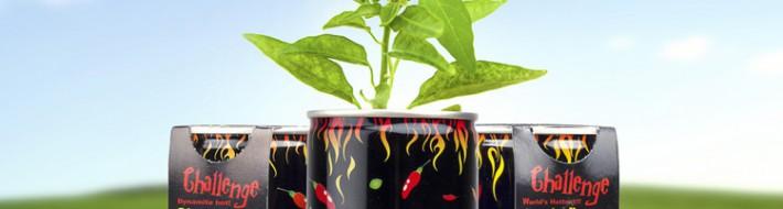 Billedet viser Chilimania, et produkt der gør det nemt at dyrke sine egne chiliplanter. Du kan frit vælge imellem tre af verdens stærkeste chili.